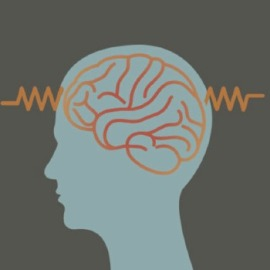 epilepsy-8eaab6fa8115a4149a05a400aa349af8.jpg