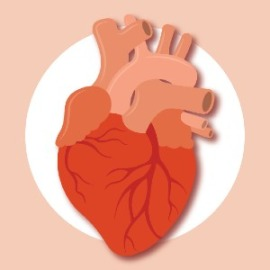 sleep-apnea-and-heart-disease-link-67d7fd4bb04d45bc4c50866c11ed4734.jpg